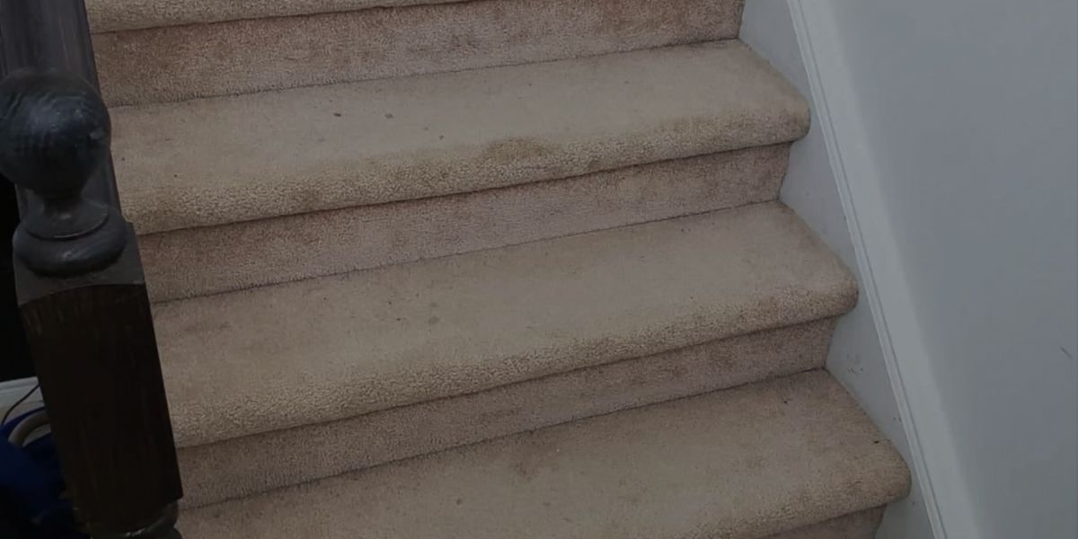 Clean a Carpet on the Stairs without a Vacuum Cleaner