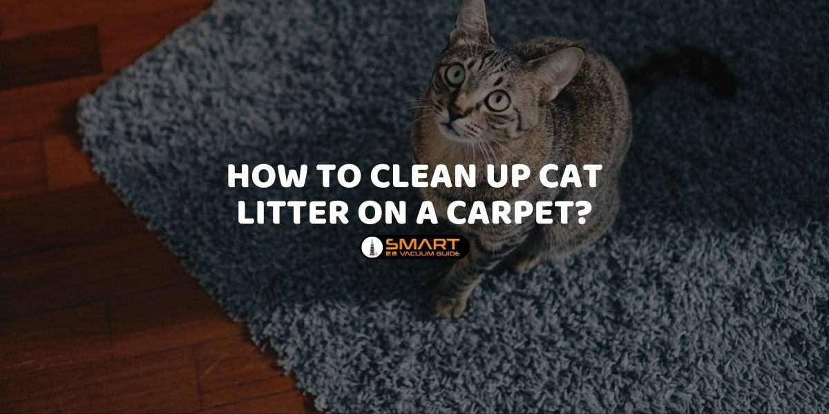 How to Clean Up Cat Litter On a Carpet_